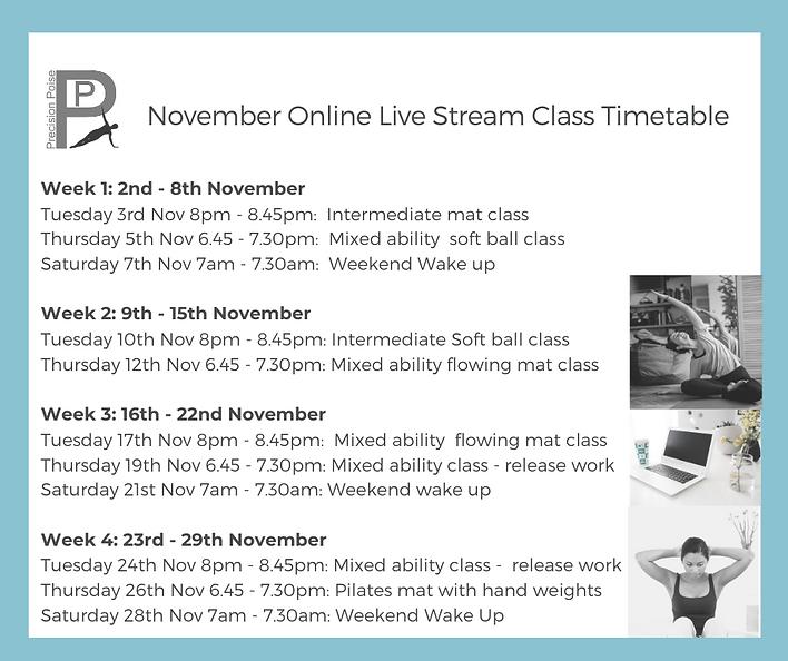 November online class schedule.png