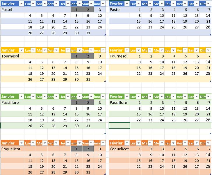Calendrier janv et fevrier 2021.PNG