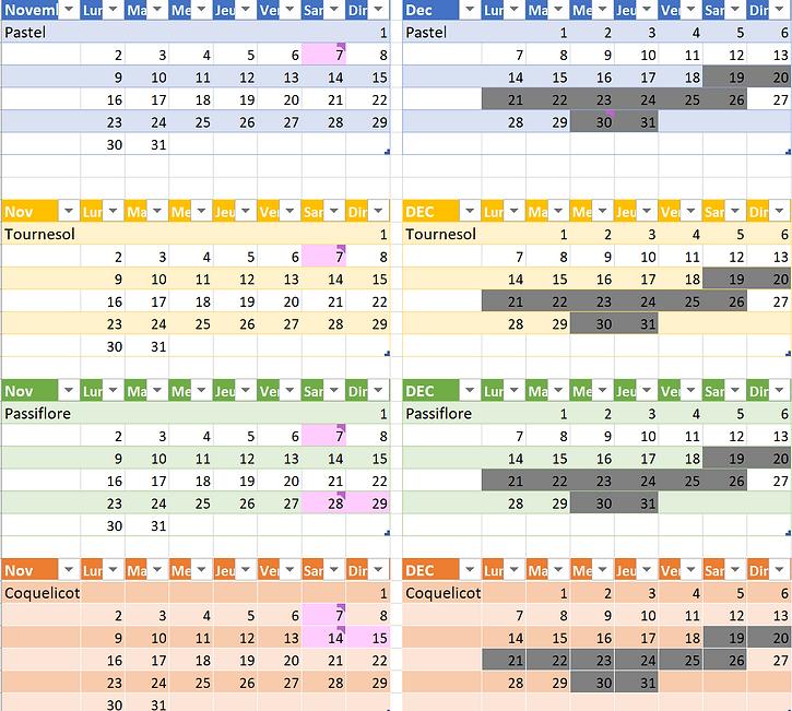 Calendrier novembre et decembre 2020.PNG