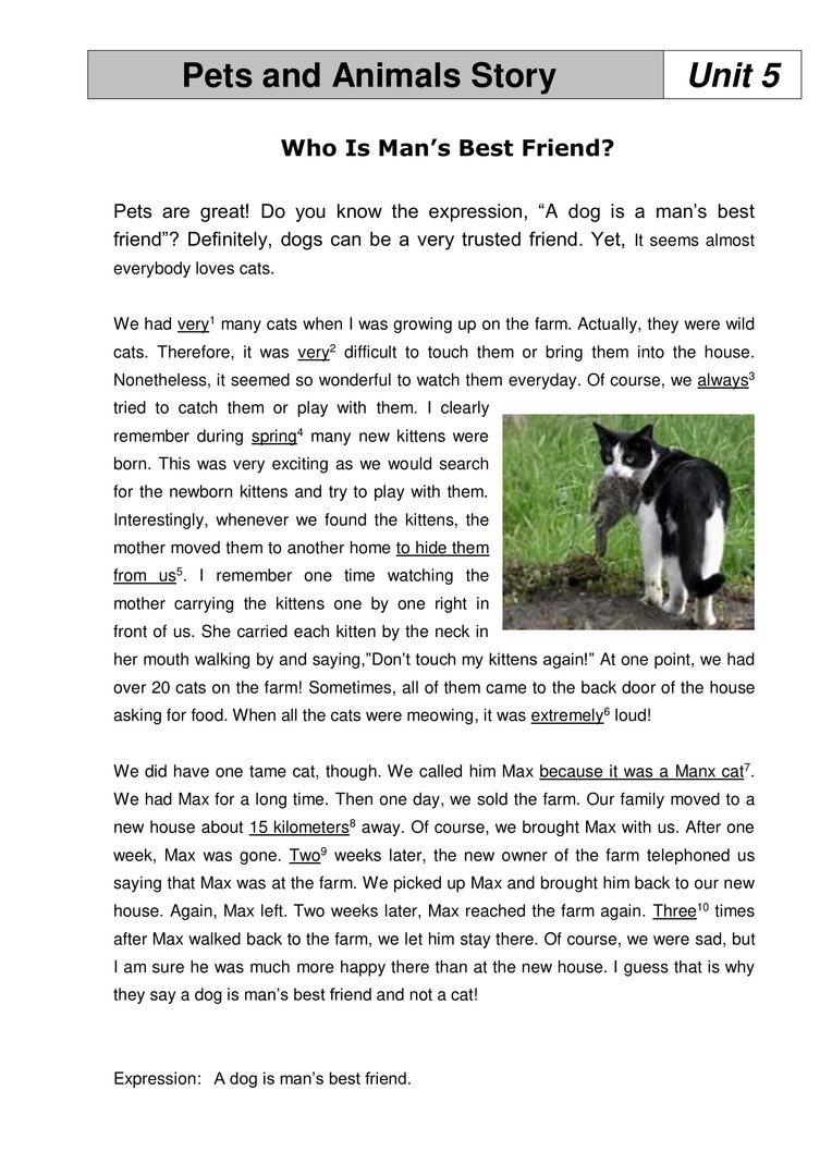 12_Unit 5 - Pets and Animals Story-1.jpg