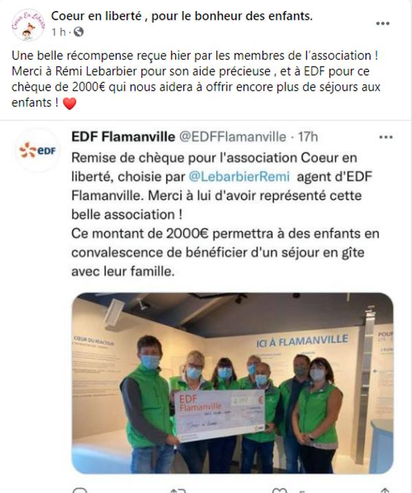 EDF FLAMANVILLE.png