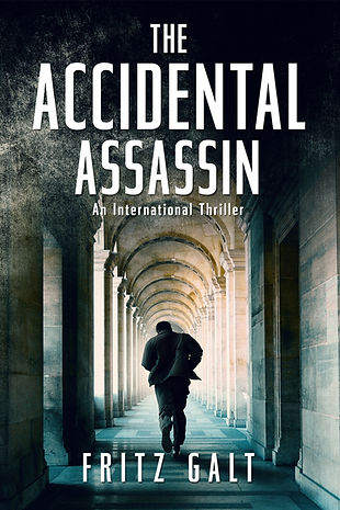 The Accidental Assassin 6x9 3.jpg