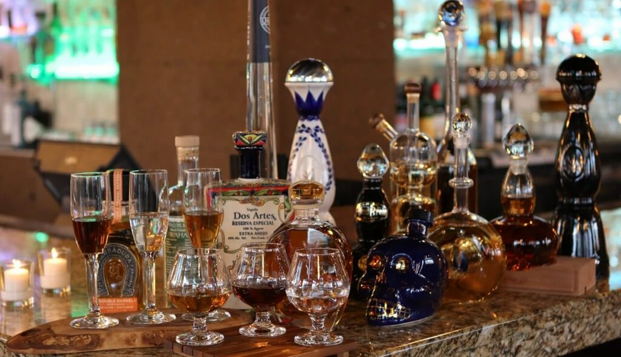 Tequila tasting experience in Los cabos