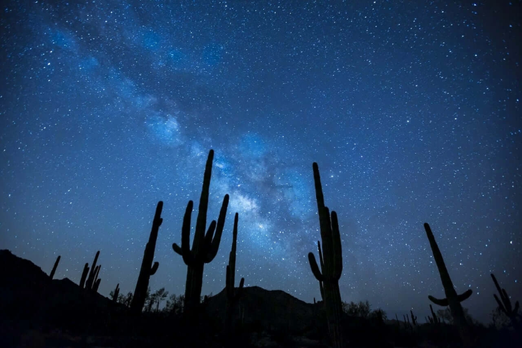 Stargazing Experience By Naay Travel.web