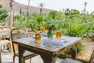 Farm to table restaurant in Cabo.