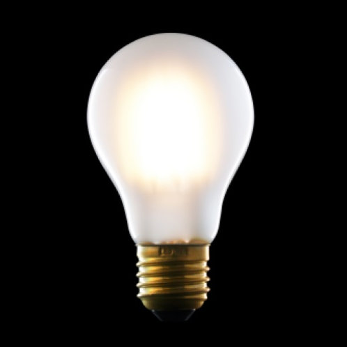 LED Filament LIGHT BULB standard clear