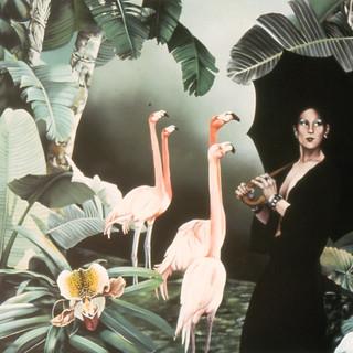 Renée with Umbrella and Six Flamingos