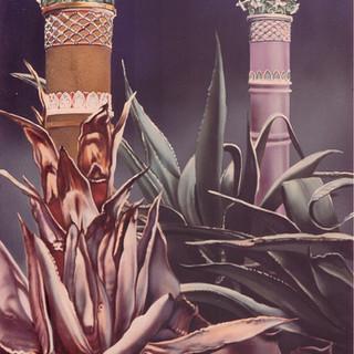 Victorian Yucca