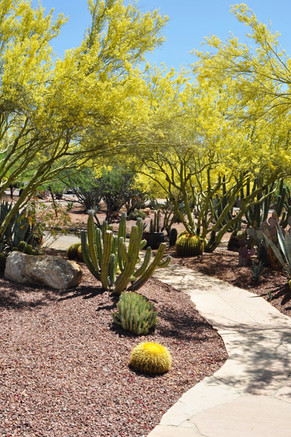 Website - Garden Inspiration - 3.jpg