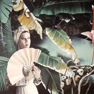 Renée With Fan and One Flamingo