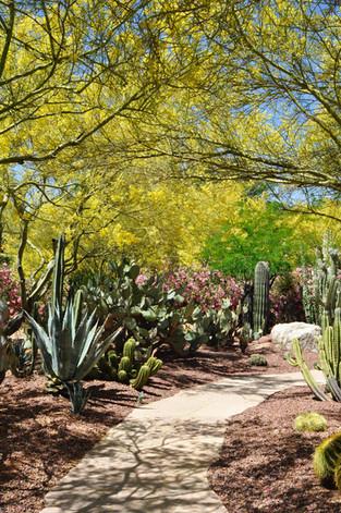 Website - Garden Inspiration - 6.jpg