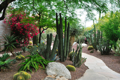 Website - Garden Inspiration - 10.jpg