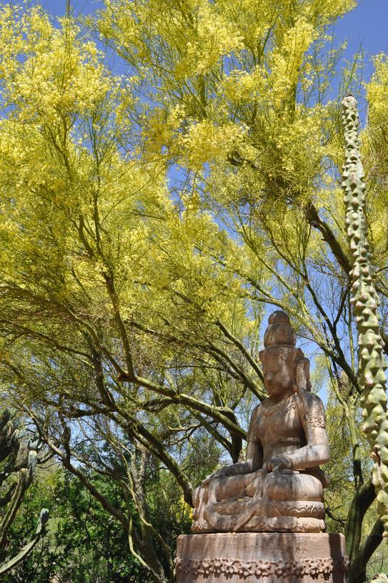 Garden Blooms 4 - 1.jpg