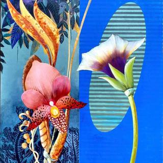 Strange Botany #17