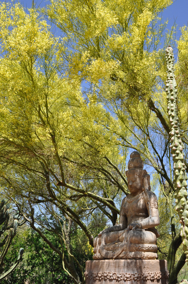 Website - Garden Inspiration - 2.jpg