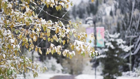 Sun Peaks Snowfall B-Roll