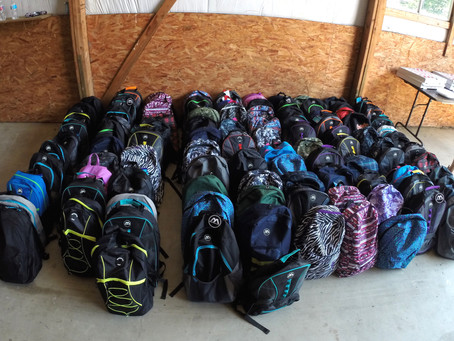 2017 Backpack Drive Review