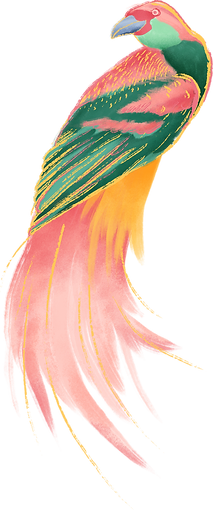 Colorful Bird_edited.png