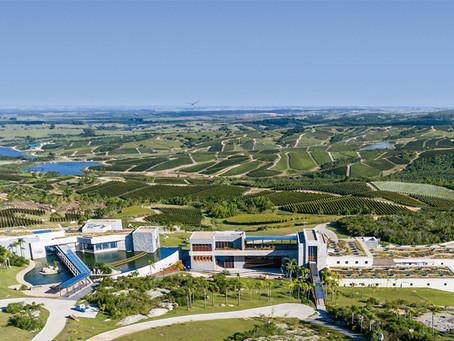 Bodega Garzón: Un paraíso en Uruguay