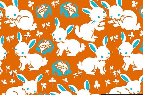 Bunnies orange