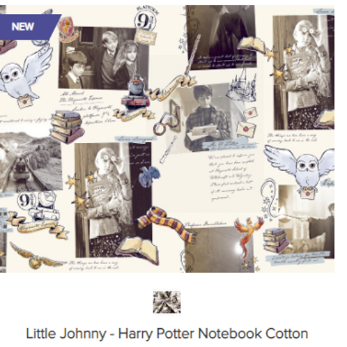 Harry Potter Magical Notebook  - Littel Johnny Collection