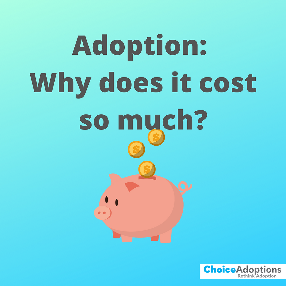 Why does adoption cost so much choice adoptions