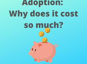 Why does adoption cost so much?