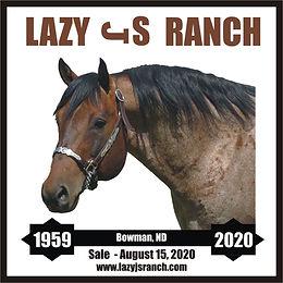 LJSR_Logo 2020.jpg
