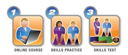 Online Course Steps Test