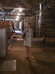 0320 Tahbilk Winery and Vineyard (1)
