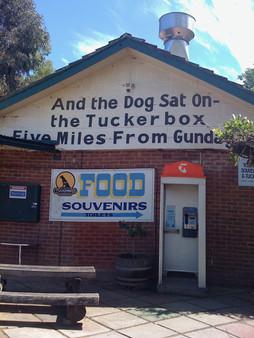 0319 On the road to Gundugai