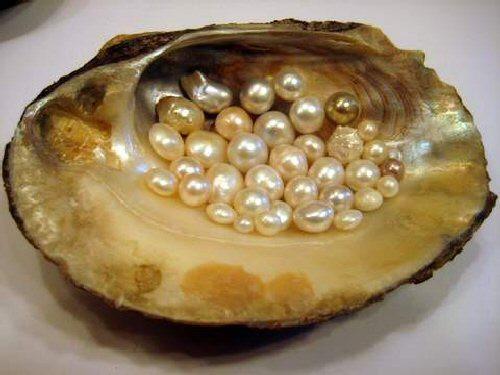 No grit.  No pearl.
