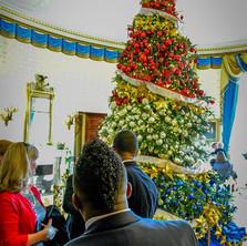 James Andrews White House 2.jpg