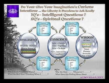 Intelligence Consciousness Knowledge.jpg