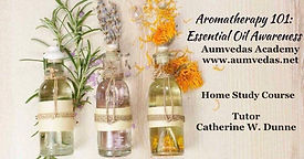 Aromatherapy EO 101.jpg