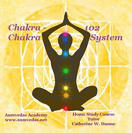 Chakra System 102.png
