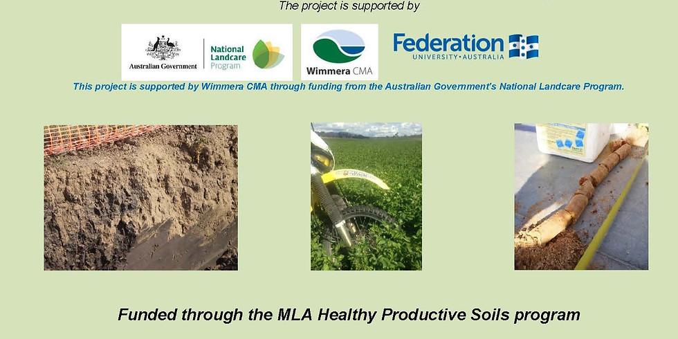 Healthy, Productive Soils.  Session 4