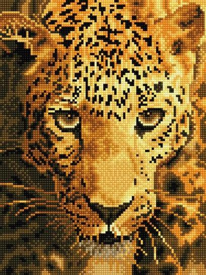 DD Jaguar Prowl 27,5x35,5cm