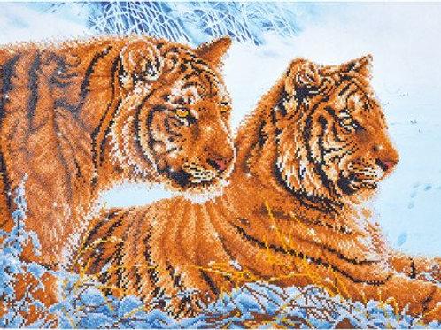 DD Tigers in the snow 72x52 cm