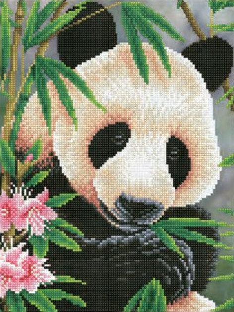 DD Panda Prince 30x40 cm