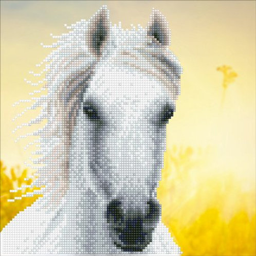 DD White Horse 30.5x30.5cm