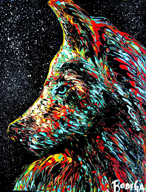Star Wolf.jpg