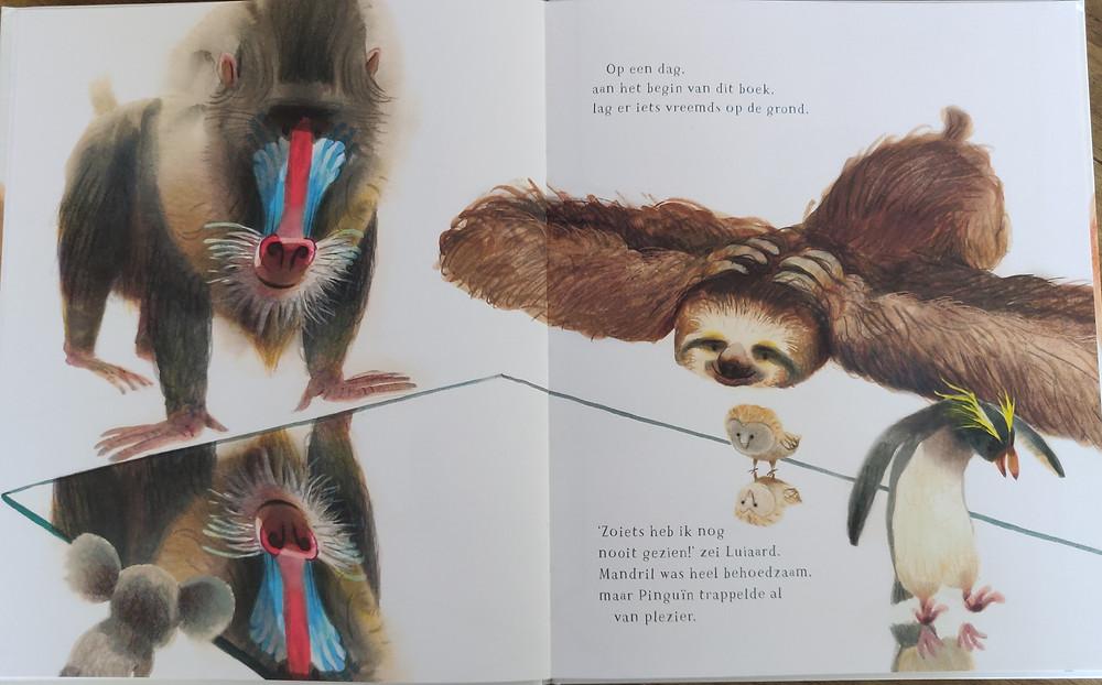 Illustratie prentenboek Raar van Mark Janssen