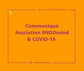 WWW.ENDOMIND.ORG (3).png