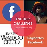 Challenge Cagnotte ENDOrun.png