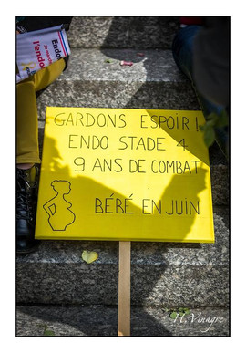 Endomarch France ENDOmind.jpg