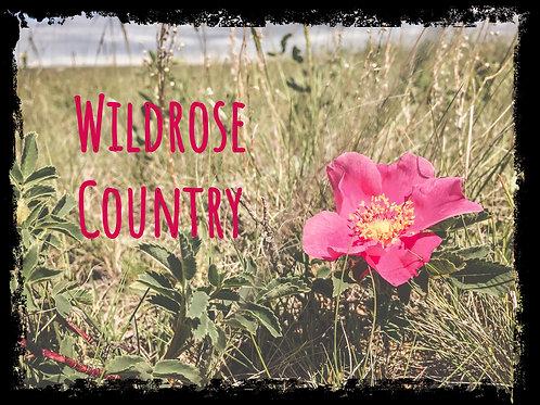 Wildrose Country