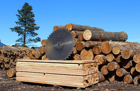 sawblade-logs-lumber.JPG