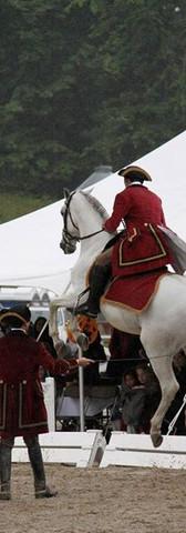 Portuguese Lusitano Horse Show 2010.jpg