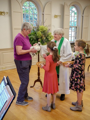 blessing of the animals.jpg